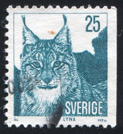 peltry: SWEDEN - CIRCA 1973: stamp printed by Sweden, shows Lynx, circa 1973