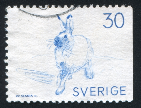 varying: SWEDEN - CIRCA 1968: stamp printed by Sweden, shows Varying hare, circa 1968