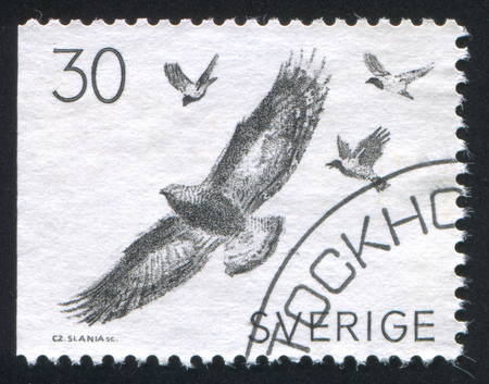 harassing: SWEDEN - CIRCA 1968: stamp printed by Sweden, shows Hooded crows harassing golden eagle, circa 1968