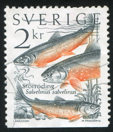 shrouds: SWEDEN - CIRCA 1985: stamp printed by Sweden, shows Fish, circa 1985
