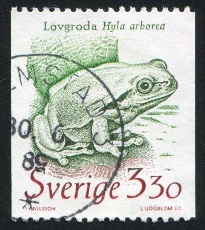 interdigital: SWEDEN - CIRCA 1989: stamp printed by Sweden, shows Frog, circa 1989 Editorial