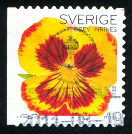 frondage: SWEDEN - CIRCA 2010: stamp printed by Sweden, shows Orchid, circa 2010