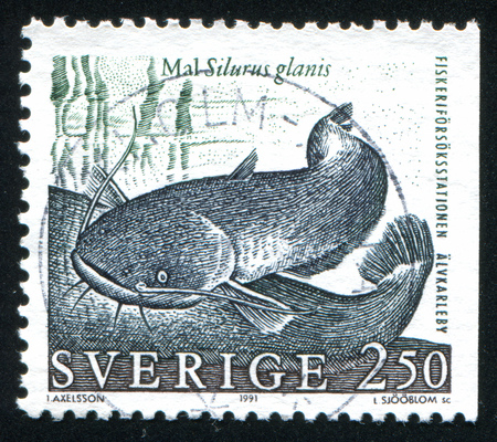 barbel: SWEDEN - CIRCA 1991: stamp printed by Sweden, shows Wels catfish, circa 1991 Editorial