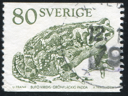 interdigital: SWEDEN - CIRCA 1979: stamp printed by Sweden, shows Green Spotted Toad, circa 1979