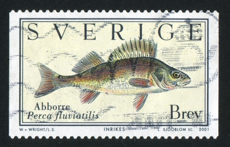 shrouds: SWEDEN - CIRCA 2001: stamp printed by Sweden, shows Perch, circa 2001