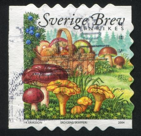 frondage: SWEDEN - CIRCA 2004: stamp printed by Sweden, shows Juniperberries, basket and mushrooms, circa 2004