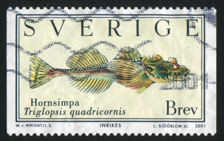 shrouds: SWEDEN - CIRCA 2001: stamp printed by Sweden, shows Sculpin, circa 2001 Editorial