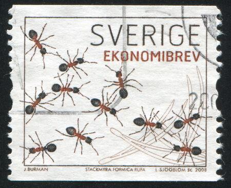 pismire: SWEDEN - CIRCA 2008: stamp printed by Sweden, shows Ants, circa 2008