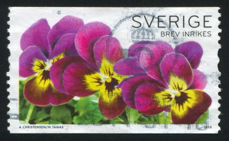 SWEDEN - CIRCA 2010: stamp printed by Sweden, shows Three Pansies, circa 2010