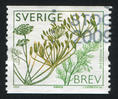 threadlike: SWEDEN - CIRCA 2009: stamp printed by Sweden, shows Dill, circa 2009