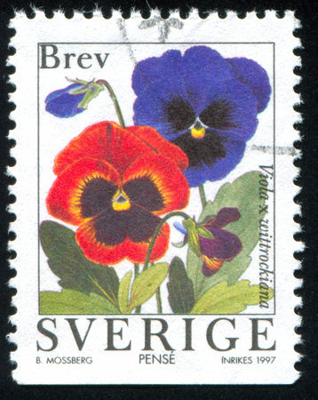 SWEDEN - CIRCA 1997: stamp printed by Sweden, shows Pansy, circa 1997