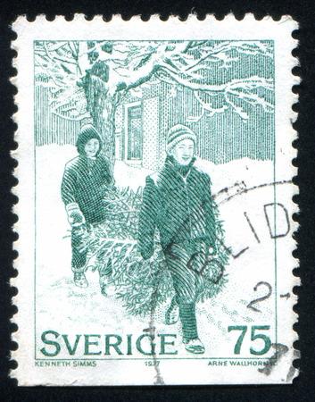 bringing: SWEDEN - CIRCA 1977: stamp printed by Sweden, shows Bringing yule tree, circa 1977