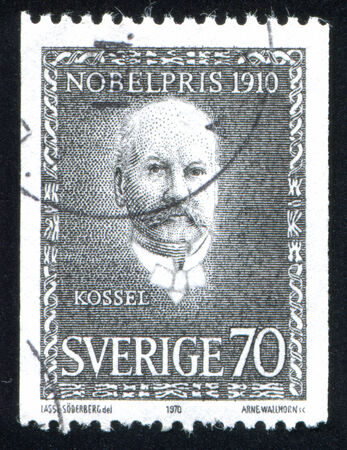 physiologist: SWEDEN - CIRCA 1970: stamp printed by Sweden, shows Albrecht Kossel, circa 1970