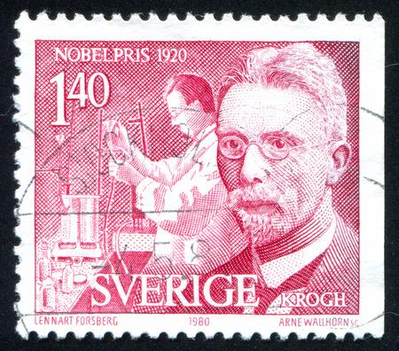 SWEDEN - CIRCA 1980: stamp printed by Sweden, shows August Krogh physiologist, circa 1980