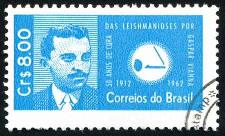 protozoa: BRAZIL - CIRCA 1962: stamp printed by Brazil, shows  Gaspar Vianna and Leishmania Protozoa, circa 1962
