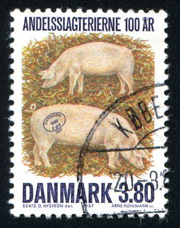 DENMARK - CIRCA 1987: stamp printed by Denmark, shows Denmark pig, circa 1987