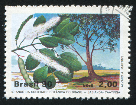 BRAZIL - CIRCA 1990: stamp printed by Brazil, shows  tree and flower, circa 1990