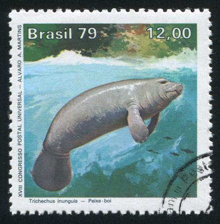 BRAZIL - CIRCA 1979: stamp printed by Brazil, shows  Amazon manatee, circa 1979