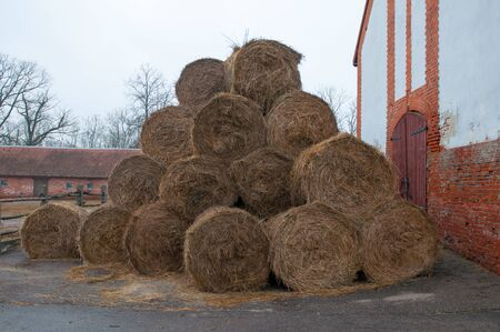 hayloft: Straw bales on farmland. Ranch for breeding horses. Kaliningrad region. Russia.