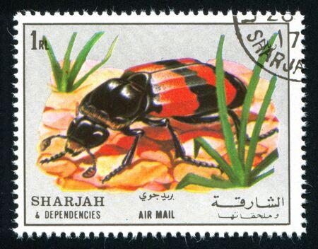sharjah: SHARJAH AND DEPENDENCIES - CIRCA 1972: stamp printed by Sharjah and Dependencies, shows entomology, circa 1972