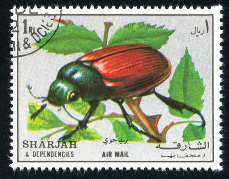 dependencies: SHARJAH AND DEPENDENCIES - CIRCA 1972: stamp printed by Sharjah and Dependencies, shows entomology, circa 1972
