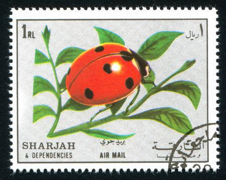 SHARJAH AND DEPENDENCIES - CIRCA 1972: stamp printed by Sharjah and Dependencies, shows ladybug, circa 1972 報道画像