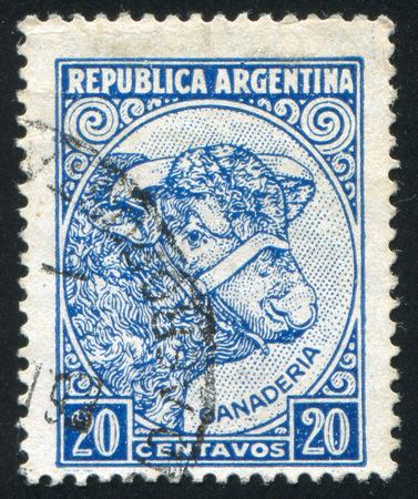 cattle breeding: ARGENTINA - CIRCA 1935: stamp printed by Argentina, shows Bull Cattle Breeding, circa 1935