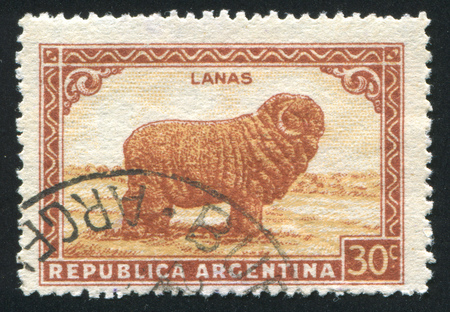 ARGENTINA - CIRCA 1935: stamp printed by Argentina, shows Merino Sheep, circa 1935