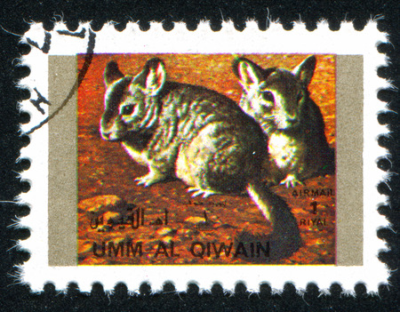 umm: UMM AL-QUWAIN - CIRCA 1972: stamp printed by Umm al-Quwain, shows Chinchillas, circa 1972 Editorial