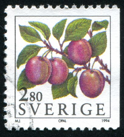opal: SWEDEN - CIRCA 1994: stamp printed by Sweden, shows Opal plum, circa 1994