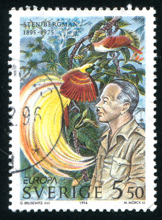 explored: SWEDEN - CIRCA 1994: stamp printed by Sweden, shows Sten Bergman explored Asia and the Pacific, circa 1994