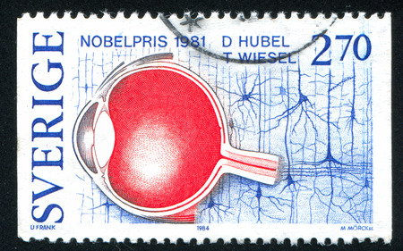 physiology: SWEDEN - CIRCA 1984: stamp printed by Sweden, shows David Hubel, Torsten Wiesel, Visual information processing Nobel Prize Winners in Physiology or Medicine, circa 1984 Editorial