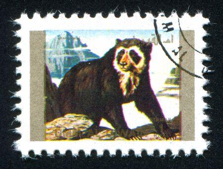 umm: UMM AL-QUWAIN - CIRCA 1972: stamp printed by Umm al-Quwain, shows spectacled bear, circa 1972 Editorial