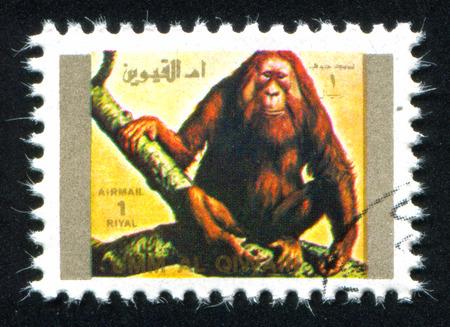 umm: UMM AL-QUWAIN - CIRCA 1972: stamp printed by Umm al-Quwain, shows John Kennedy, circa 1972