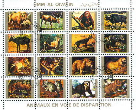 umm: UMM AL-QUWAIN - CIRCA 1972: stamp printed by Umm al-Quwain, shows animals, circa 1972 Editorial