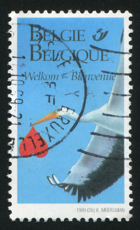 squawk: RUSSIA KALININGRAD, 26 OCTOBER 2015: stamp printed by Belgium, shows Stork carrying a heart, circa 1999 Editorial