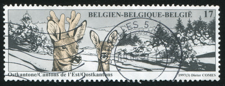 cantons: RUSSIA KALININGRAD, 20 OCTOBER 2015: stamp printed by Belgium, shows Eastern Cantons Deer, circa 1997