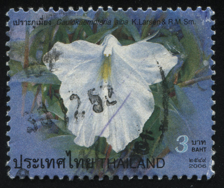 RUSSIA KALININGRAD, 3 JUNE 2016: stamp printed by Thailand shows flower, circa 2006