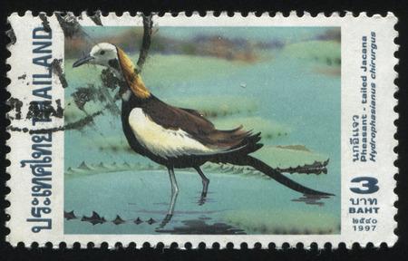 RUSSIA KALININGRAD, 2 JUNE 2016: stamp printed by Thailand, shows Pheasant, circa 1997 Editorial