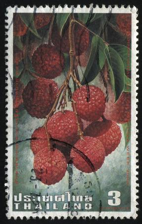lichi: RUSSIA KALININGRAD, 30 MAY 2016: stamp printed by Thailand, shows Lichi, circa 2003