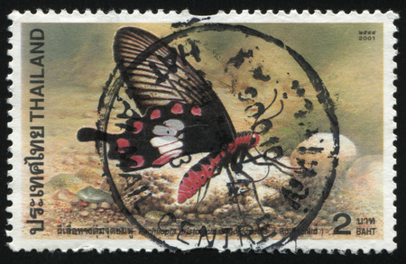 postage stamp: RUSSIA KALININGRAD, 2 JUNE 2016: stamp printed by Thailand shows butterfly, circa 2001 Editorial
