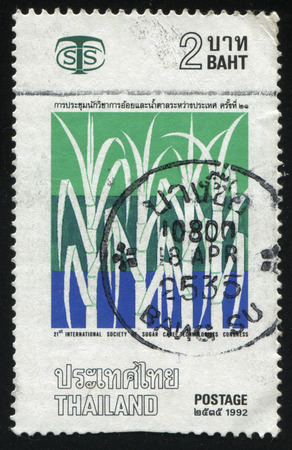 technologists: RUSSIA KALININGRAD, 31 MAY 2016: stamp printed by Thailand, shows illustration of sugar - сane, dedicated to 21st international society of sugar care technologists congress, circa 1992