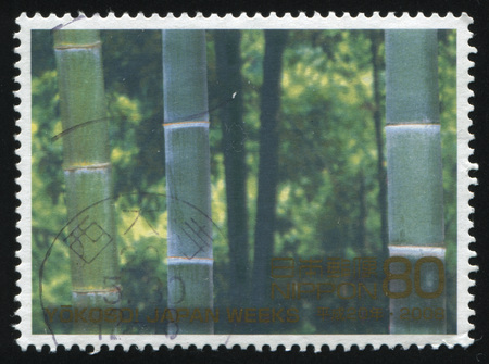 bosk: RUSSIA KALININGRAD, 18 MARCH 2016: stamp printed by Japan, shows green bamboo, circa 2029 Editorial