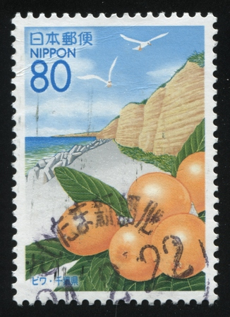 postage: RUSSIA KALININGRAD, 18 MARCH 2016: stamp printed by Japan, shows sea or ocean shore, flying seagulls and some oranges, circa 2009 Editorial