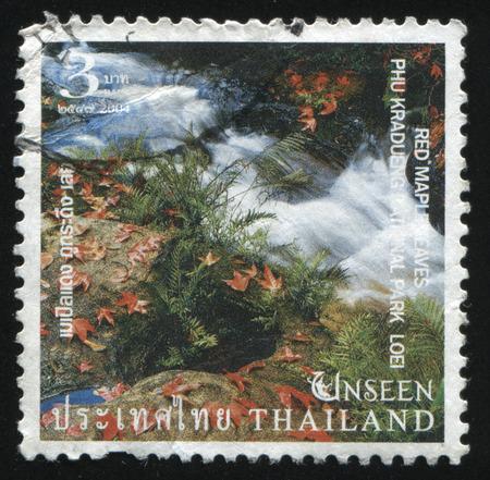 kradueng: RUSSIA KALININGRAD, 3 JUNE 2016: stamp printed by Thailand, shows red marple leaves in Phu Kradueng National Park, Loei, 2004.