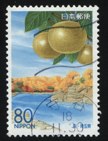 postage: RUSSIA KALININGRAD, 18 MARCH 2016: stamp printed by Japan, shows banks of the river, and some fruit, circa 2009