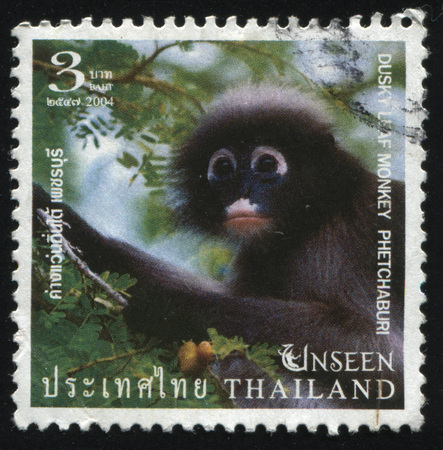 obscura: RUSSIA KALININGRAD, 3 JUNE 2016: stamp printed by Thailand, shows monkey (Presbytes obscura) in forest at Phetchaburi, 2004 Editorial