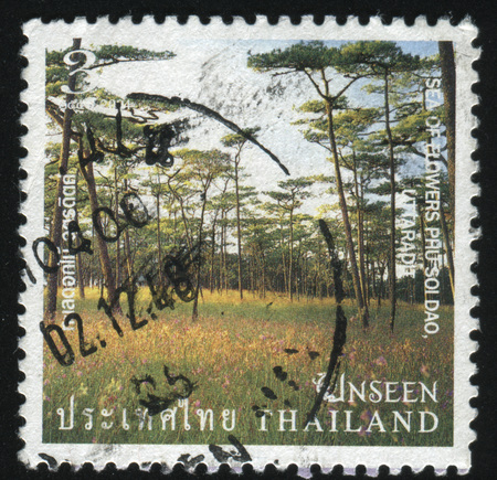 soi: RUSSIA KALININGRAD, 3 JUNE 2016: stamp printed by Thailand, shows sea of flowers, Phu Soi Dao, Uttaradit Province, 2004 Editorial