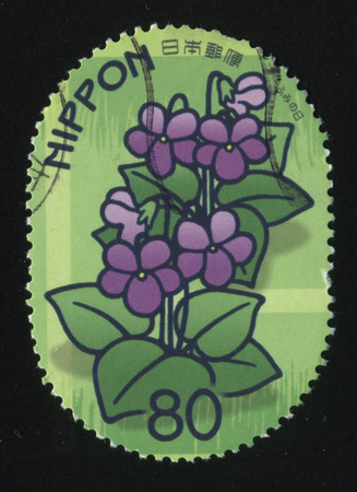 RUSSIA KALININGRAD, 19 APRIL 2016: stamp printed by Japan, shows violets in blossom, circa 2011