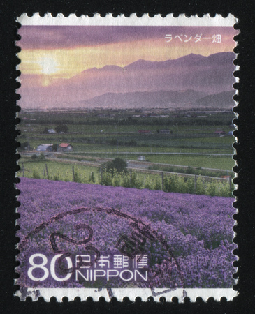 RUSSIA KALININGRAD, 22 APRIL 2016: stamp printed by Japan, shows meadow of violet flowers, circa 2011